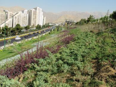 پایان نامه طراحی فضای شهری امن در حاشیه بزرگراه شهر تهران