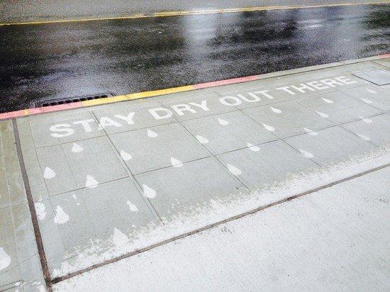 نقاشی هایی که باید زیر باران دید